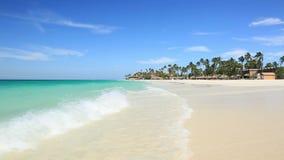 惊人的秀丽白色沙子海滩阿鲁巴岛 绿松石海水和蓝天 影视素材