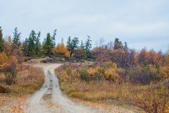 惊人的秋天风景在俄罗斯北部 免版税库存图片