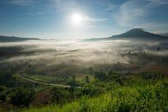 惊人的美好的有薄雾的早晨在泰国 库存图片