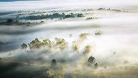 惊人的美好的有薄雾的早晨在泰国 免版税库存图片