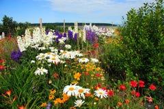惊人的花园 免版税库存照片