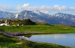 惊人的风景斯洛文尼亚春天山 免版税库存图片