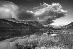 惊人的黑白日出风景图象在冬天L 免版税库存照片