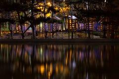 惊人的黑暗的夜公园视图 库存图片