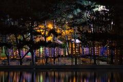 惊人的黑暗的夜公园视图 免版税库存照片
