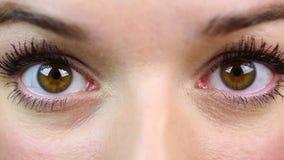 惊奇的女性眼睛宏观看法,美丽的女孩看某事吓唬 影视素材