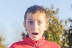 惊奇的少年在公园 库存图片
