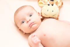 惊奇的婴孩与玩具的2个月 图库摄影