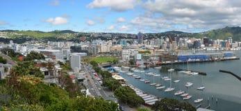 惠灵顿市全景在春天,新西兰 免版税库存照片