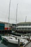 惠灵顿江边,新西兰 免版税库存图片