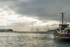 惠灵顿港口 库存照片