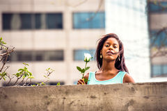 想念您有在新的白色玫瑰的年轻非裔美国人的妇女 库存照片