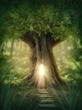 幻想树上小屋 库存图片