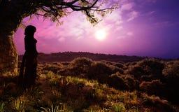 幻想森林浪漫日落的女孩 免版税库存照片
