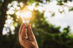 想法太阳能本质上,拿着电灯泡的手 免版税库存图片