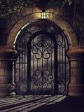 幻想门在晚上 向量例证