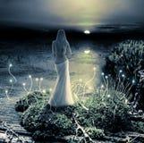 幻想魔术世界。小精灵和日落 免版税库存照片