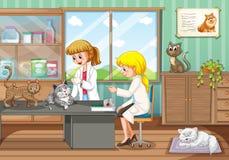 愈合动物的两位狩医在医院 皇族释放例证