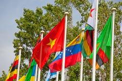 愉快世界的旗子 图库摄影