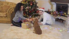 愉快在爱加上狗在圣诞树附近放松 影视素材