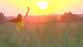 愉快地跑通过金黄麦子的领域的一个女孩在日落,慢动作 跑在黄色麦子的秀丽女孩 股票视频