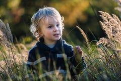 愉快小男孩使用室外在美好的秋天风景 免版税图库摄影