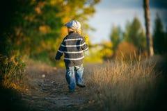 愉快小男孩使用室外在美好的秋天风景 图库摄影