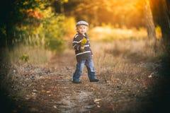 愉快小男孩使用室外在美好的秋天风景 免版税库存图片
