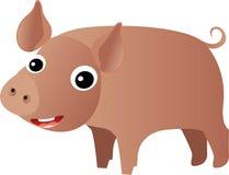 愉快猪微笑 免版税库存图片