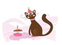 愉快生日的猫 库存图片
