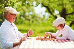 愉快的下棋的祖父和孙子在春天庭院里 免版税库存图片