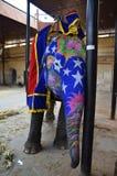 愉快的五颜六色的被绘的大象在印度 免版税库存照片