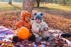 愉快的使用与叶子的儿童男孩和女孩在秋天公园。 免版税库存照片