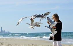 愉快的健康成熟妇女手哺养的海鸥在海滩的鸟 免版税库存图片