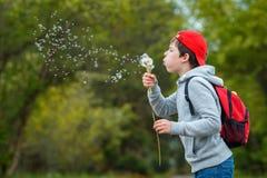 愉快的儿童吹的蒲公英花户外 男孩获得乐趣在春天公园 被弄脏的绿色背景 库存图片