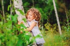 愉快的儿童女孩拥抱桦树在夏天森林里 免版税库存图片