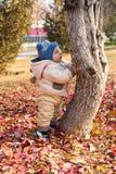 愉快的儿童男孩使用与叶子在秋天公园。 免版税库存图片