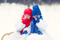 愉快的兄弟和姐妹走在冬天森林里的服装雪人的 免版税库存照片
