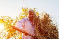 愉快的农夫人会集与干草叉的干草在日落在乡下 库存照片