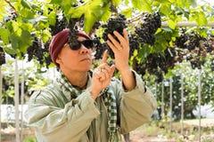 愉快的农夫用葡萄果子 免版税库存图片
