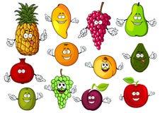 愉快的动画片新鲜的热带水果 免版税库存图片