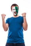 愉快的北爱尔兰人足球迷为北爱尔兰国家队祈祷 免版税库存图片