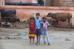 愉快的印地安小学生 库存图片