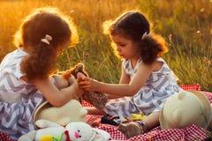 愉快的双姐妹孩子 卷曲女孩姐妹在使用与玩具的野餐的一个公园 免版税库存照片