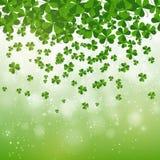 愉快的圣帕特里克的天背景设计,明信片,模板,邀请,绿色三叶草离开,传染媒介 库存图片