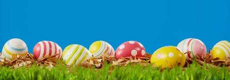 愉快的复活节全景横幅用鸡蛋在草甸 免版税库存照片