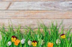 愉快的复活节贺卡用鸡蛋和开花在新鲜的绿色草甸装饰 库存照片