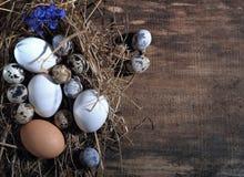愉快的复活节 复活节彩蛋和复活节装饰在木桌上 库存图片