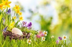 愉快的复活节卡片或广告 免版税库存图片