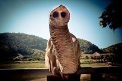 愉快的大象树干 免版税库存照片
